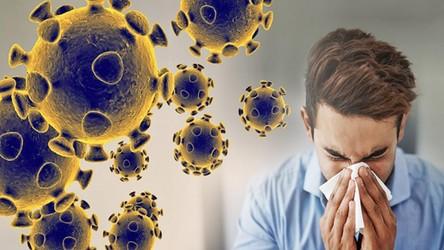 Ekspert: Koronawirus może ostatecznie zainfekować aż 6 miliardów ludzi